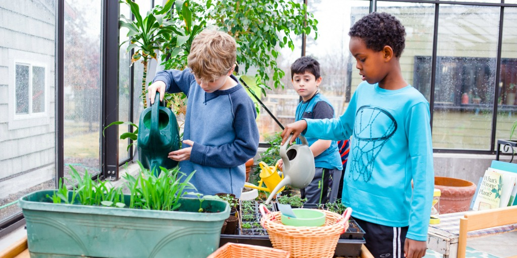 Montessori School Kids Planting Flowers