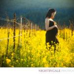 Maternity-photos-bay-area