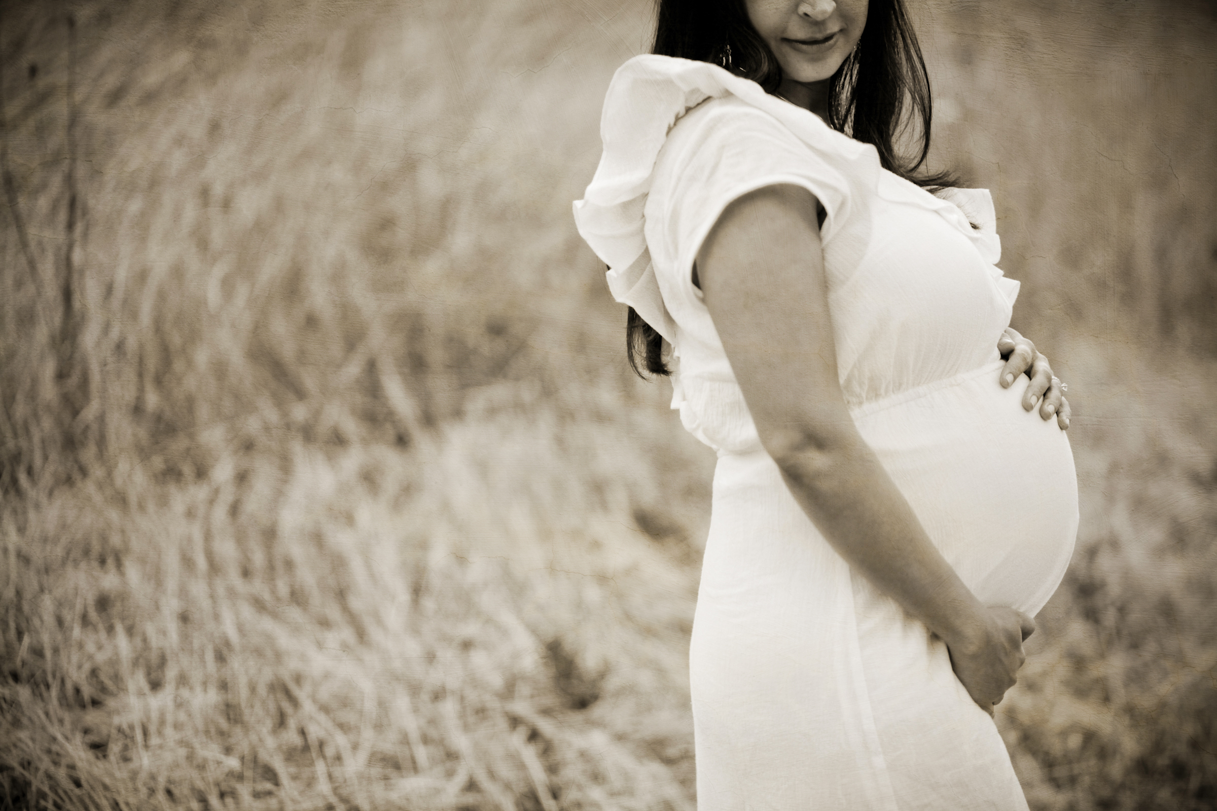 best maternity photographer bay area