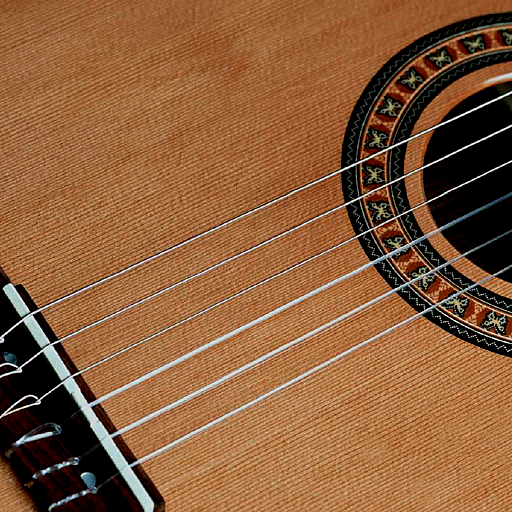 Alan Pongetti's Classical Guitar Lessons