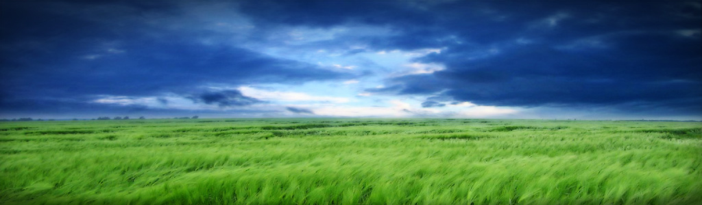 clouds-and-grass-header
