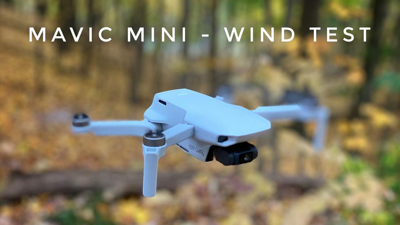 DJI Mavic Mini Wind Test.