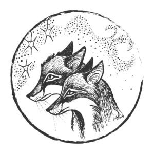 FOXCRAFT7