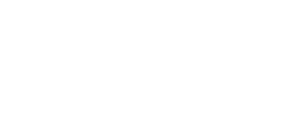 dodge_cover