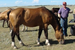 quirt and don 8-21-11