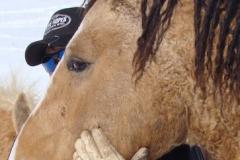quirt head left closeup 11-3-11