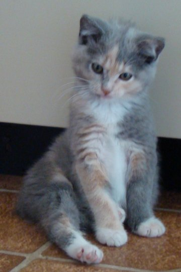 toes front sitting curious 6-24-10