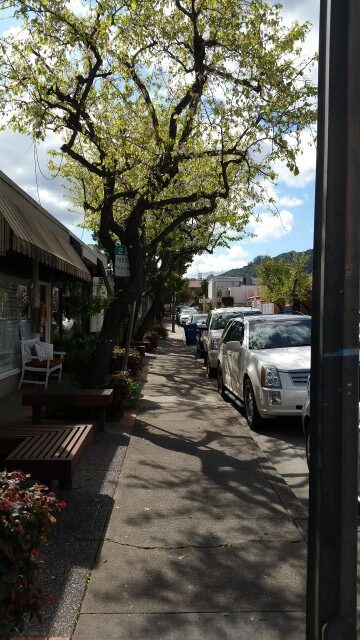 Village Lane in Los Gatos - home to Workshop and other great businesses