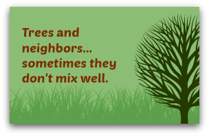 Trees and neighbors - sometimes they don't mix well