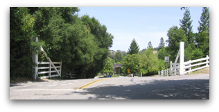 Surry Farm Gate - Los Gatos CA