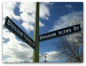 Blossom Valley Blossom Acres street sign