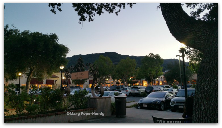 Twilight at Old Town Los Gatos CA