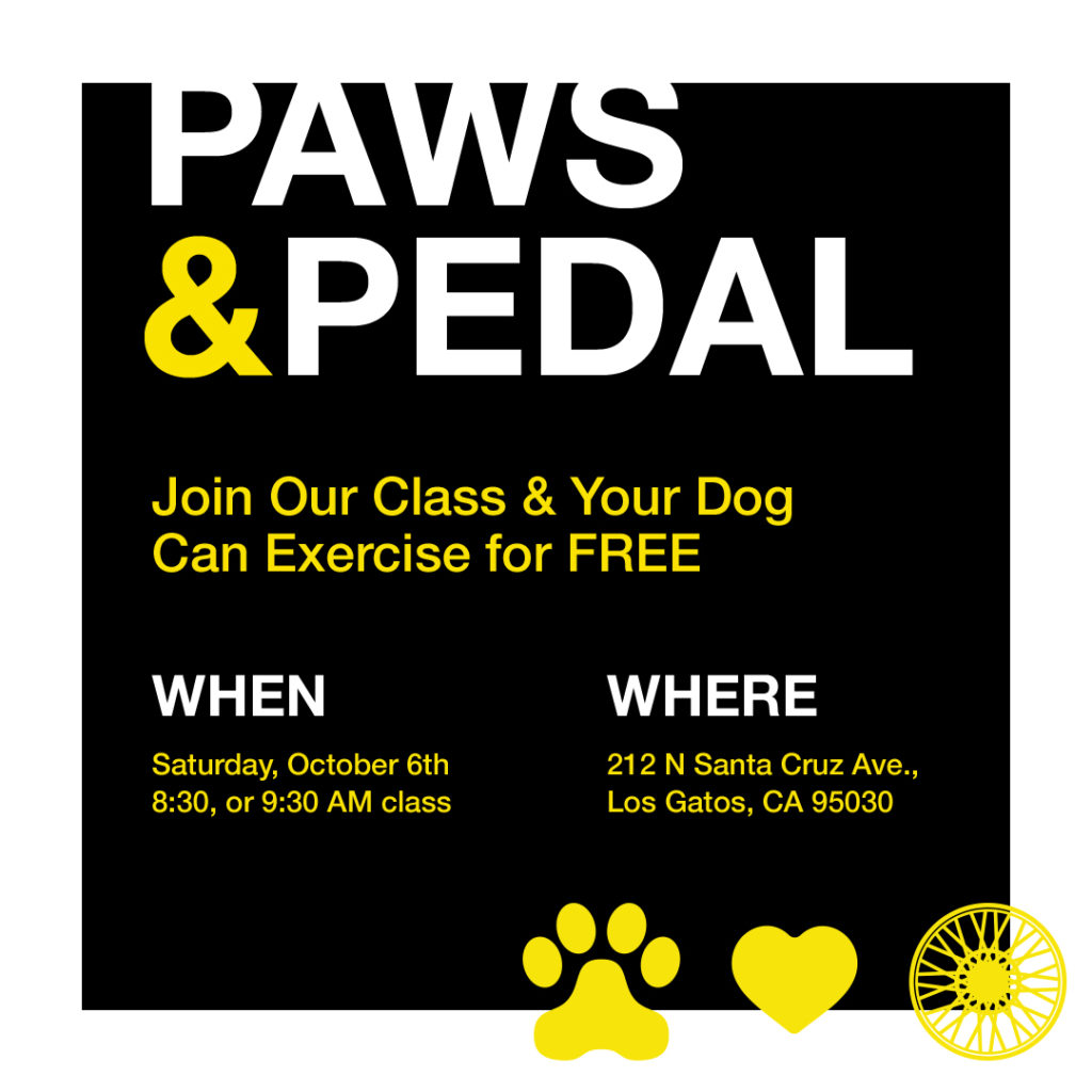 Paws and Pedal fundraiser in Los Gatos