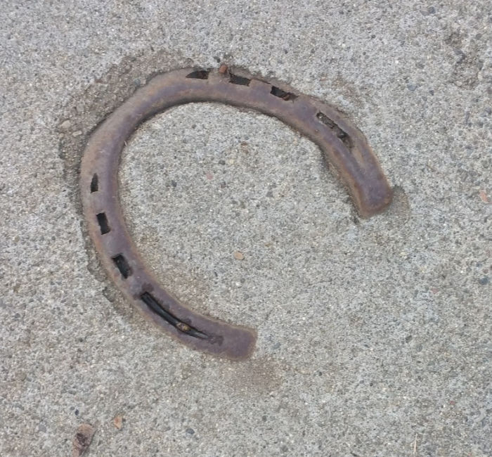 Horseshoe in concrete in Los Gatos