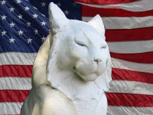 Patriot Cat Vote the Los Gatos Election