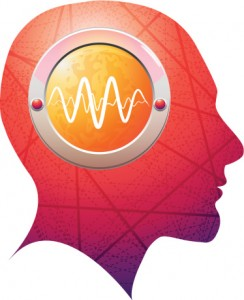 Epilepsy brain