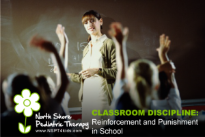 reinforcement and punishment in the classroom
