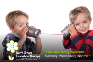 Sensory processing disorder auditory system