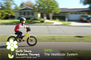 Sensory Processing Disorder the vestibular system
