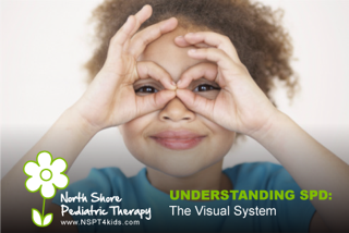 Understanding Sensory Processing Disorder: The Visual System