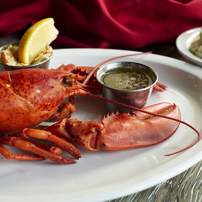 lobster_45_648A0855