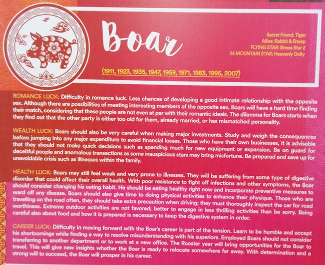 boar-2017-Feng-Shui-Forecast-by-Marites-Allen-at-SM-Lanang-Premier-Davao