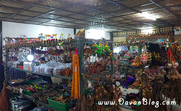 Bohol-Tourist-Spot-Tarsier-sanctuary-in-Bohol-Tarsiers-5