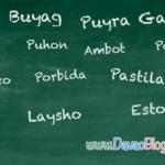 davaoblog-top-common-bisaya-phrase-and-expressions-lets-learn-bisaya-purya-buyag-gaba-pastilan-puhon-simbako