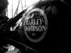 harley-whse