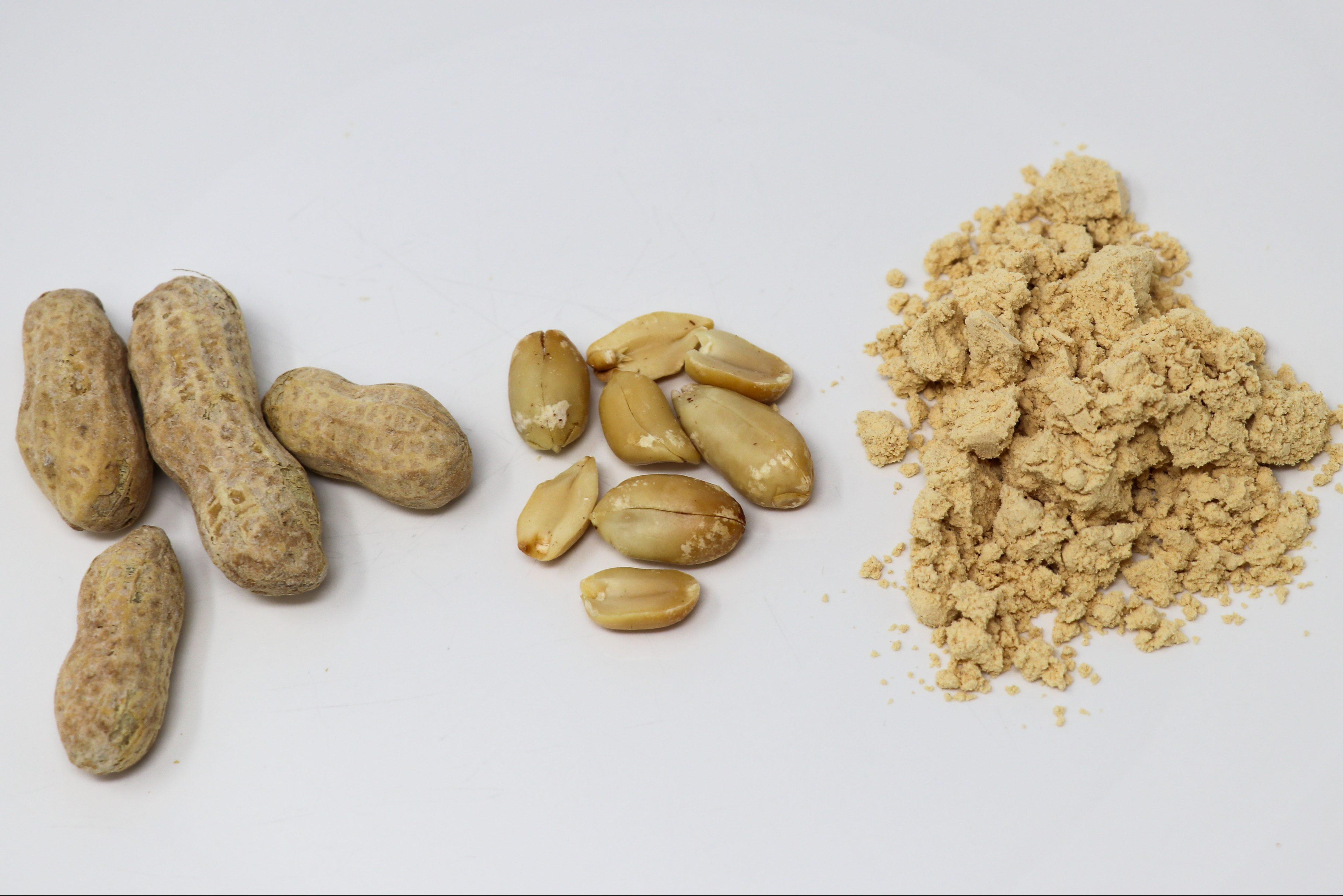 powdered peanut butter vs regular peanut butter