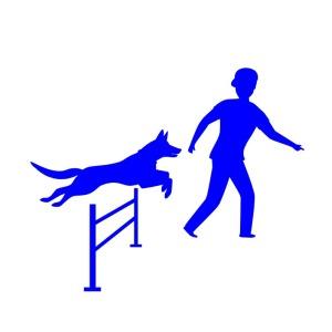 Triune Canine Training AKC Agility