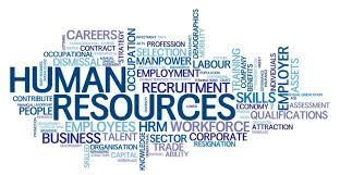 Skills, Careers, Employee, Recruitment