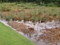 Flooding Soils