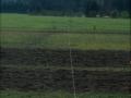 Before Meadow