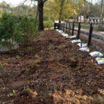 Initial soil preparation.