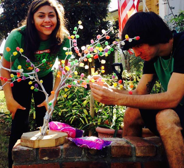 Gum Drop Tree Planting!