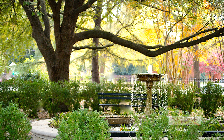 Garden Design with Fountain