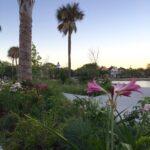 Colonial-Lake-Park-Charleston-IMG_2181-scaled-1.jpg