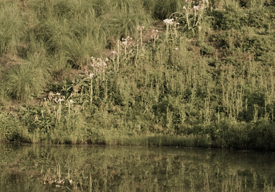 To erosion prone or retention ponds…