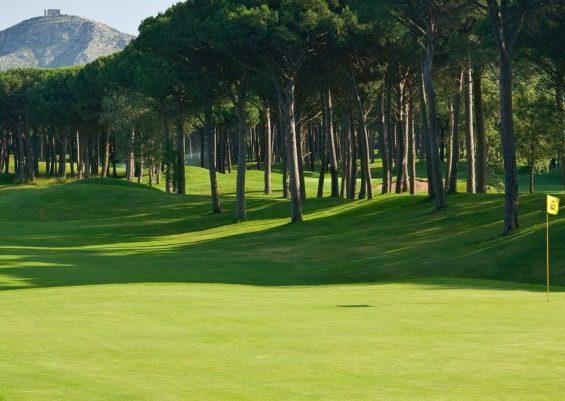 Emporda Forest, Spain   Blog Justteetimes