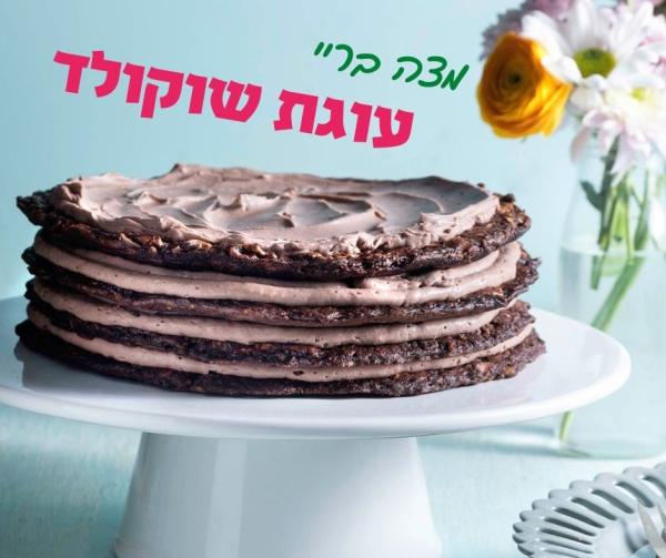 עוגת מצה בריי שוקולד-צילום: דניאל לילה_מתכון וסטיילינג: טליה הדר