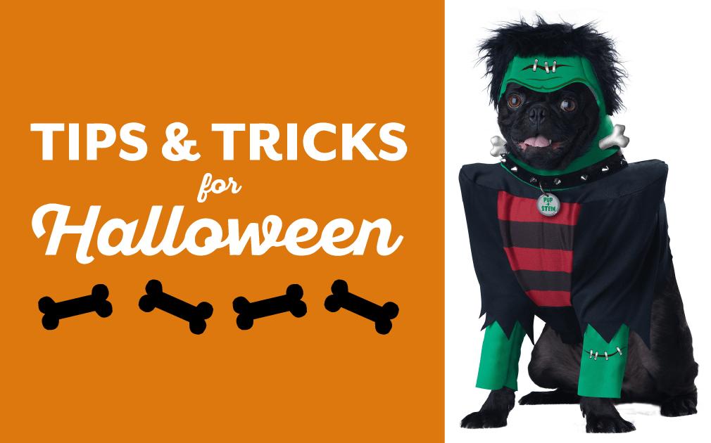 Tips & Tricks for Halloween