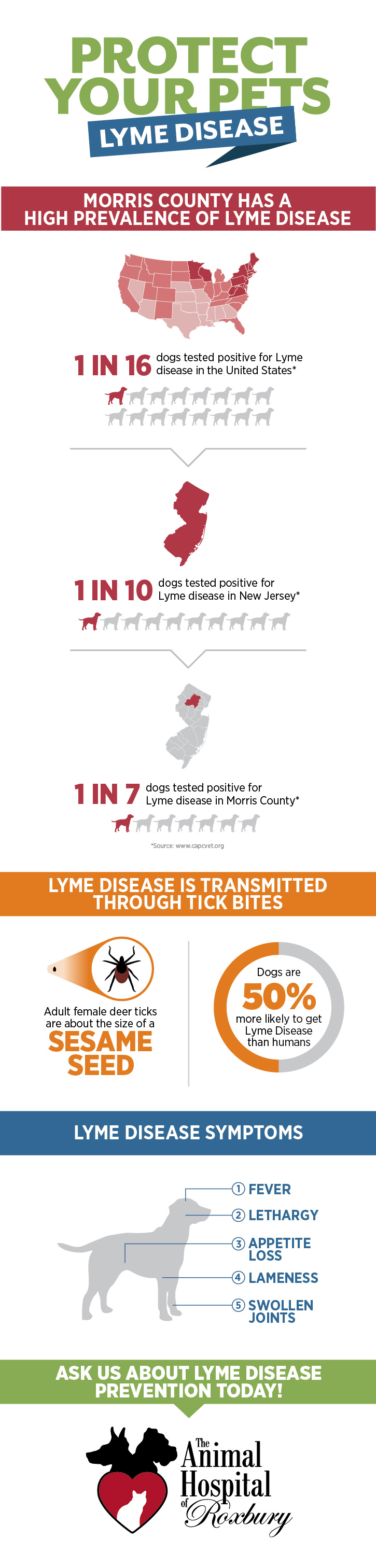 Lyme_Infographic_Web
