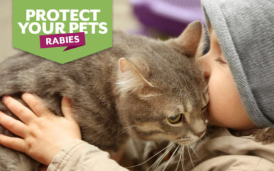 Keep your pets protected from Rabies!