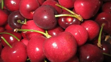 Cherries seasonal eats