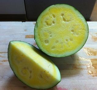 Yellow watermelon resized