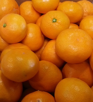 Satsumas used for Packer Ad