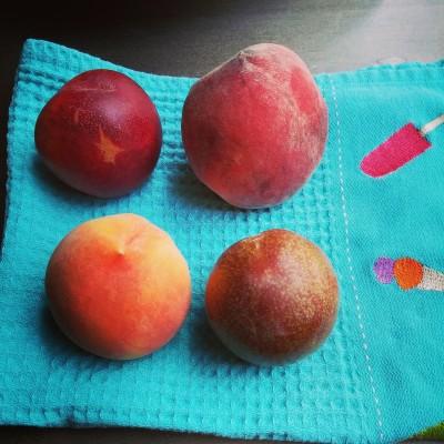 Stonefruit on Towel