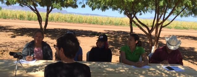 Farm Interviews