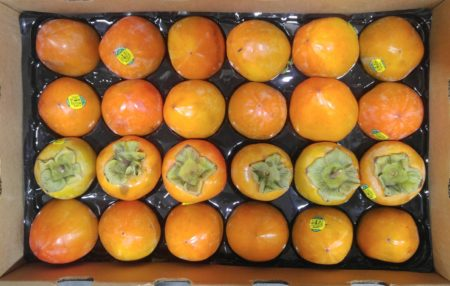 hachiya-persimmons